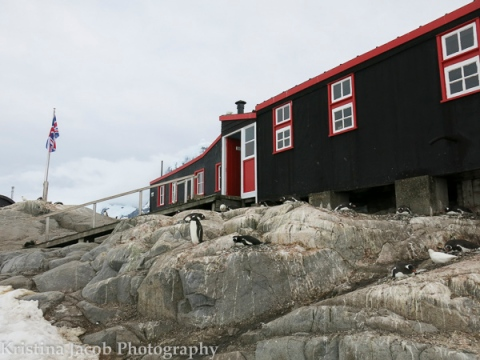 One of the few buildings at Port Lockroy.